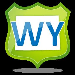 Burris Wyoming buy here pay here car dealers